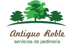 ANTIGUO ROBLE